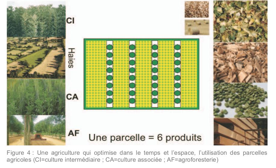 Exemple de l'utilisation des sols dans le scénario AFTERRE